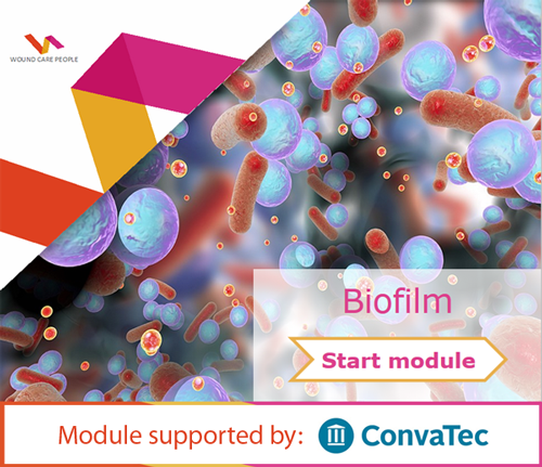 Biofilm Learning Zone e-learning module (wound care) - Wound